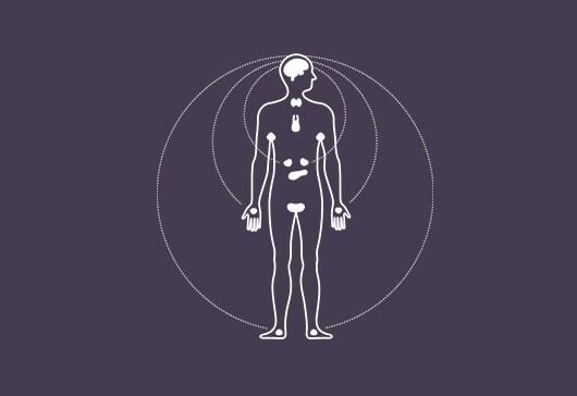 saber más sobre las zonas de sudoración corporal